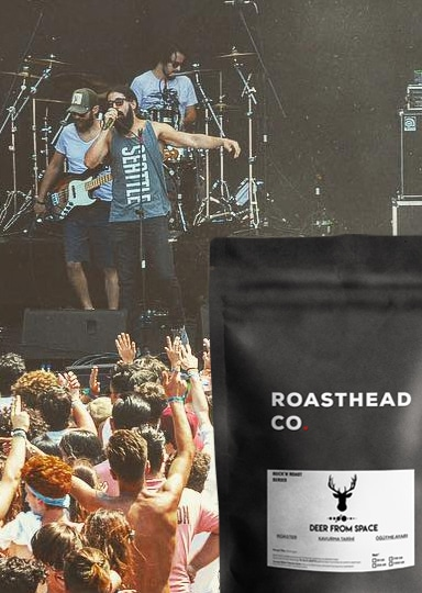 dfs-coffee-roasthead